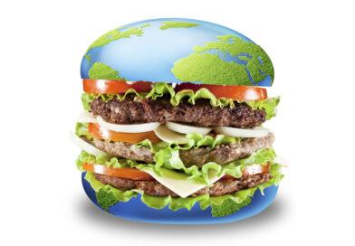 Fleisch als Klimakiller