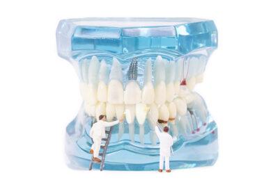 Zähne Pförtner unseres Körpers